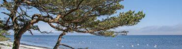 Tanie i komfortowe kwatery w Kątach Rybackich